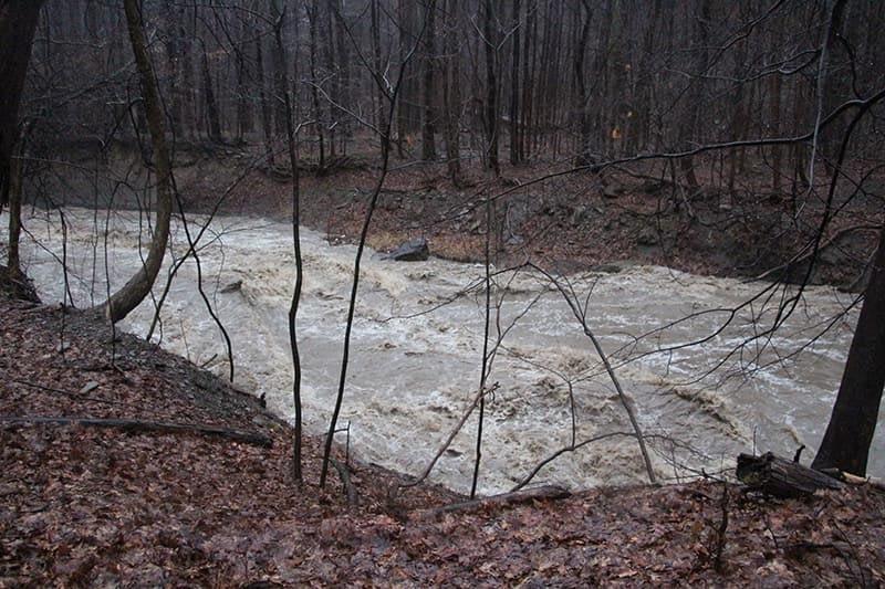 Euclid Creek Overflowing