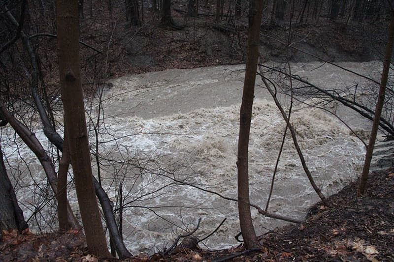 Euclid Creek Overflowing