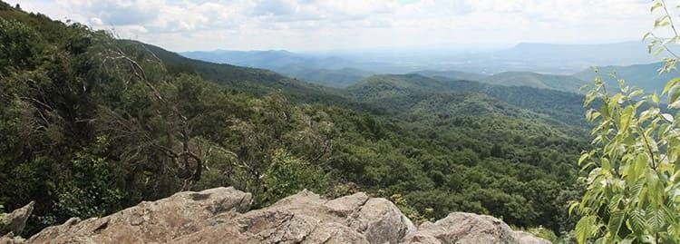 Wilderness Liaison Heading Photo